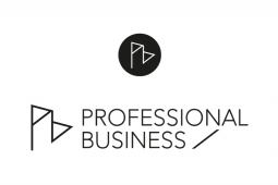 Logo Professional Business